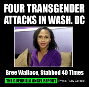 Bree Wallace, was one victim listed in the attacks. Wallace was stabbed 40 times last month.